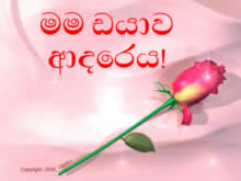 I love you in Sinhalese