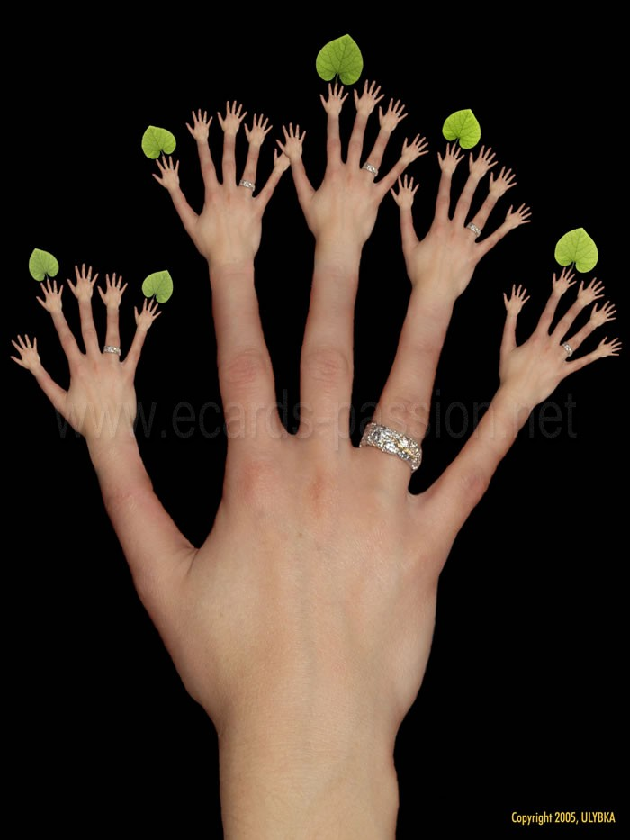 branches; fingers; growing hands with leaves; plants; human tree