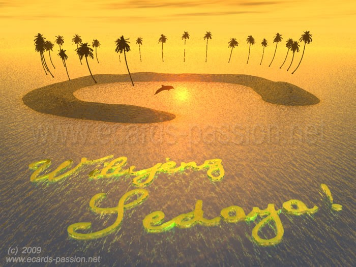 dolphin jumping near island, coconut trees and palm trees, sea at sunset, wishing a nice day