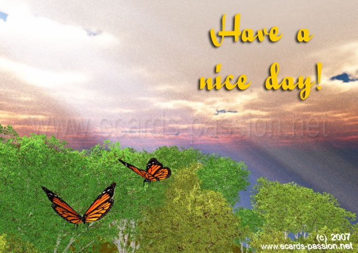 flying butterflies; god rays; light of happiness; nice sunny day