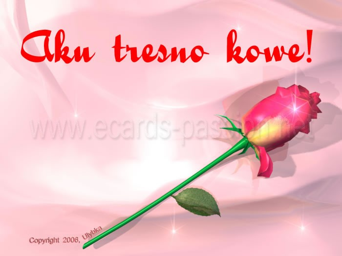 Kula tresna sampeyan romantic feelings, red rose, cute flowers, deep love