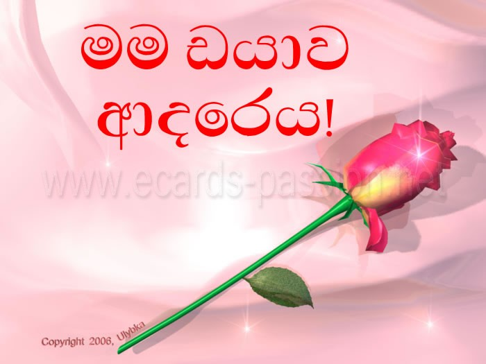 I love you 69. Sinhalese 13 million