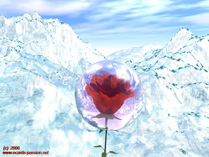 Alps in winter; cold weather; red rose in crystal ball; fragility of love; ice and snow in mountains; protected flower; red roses