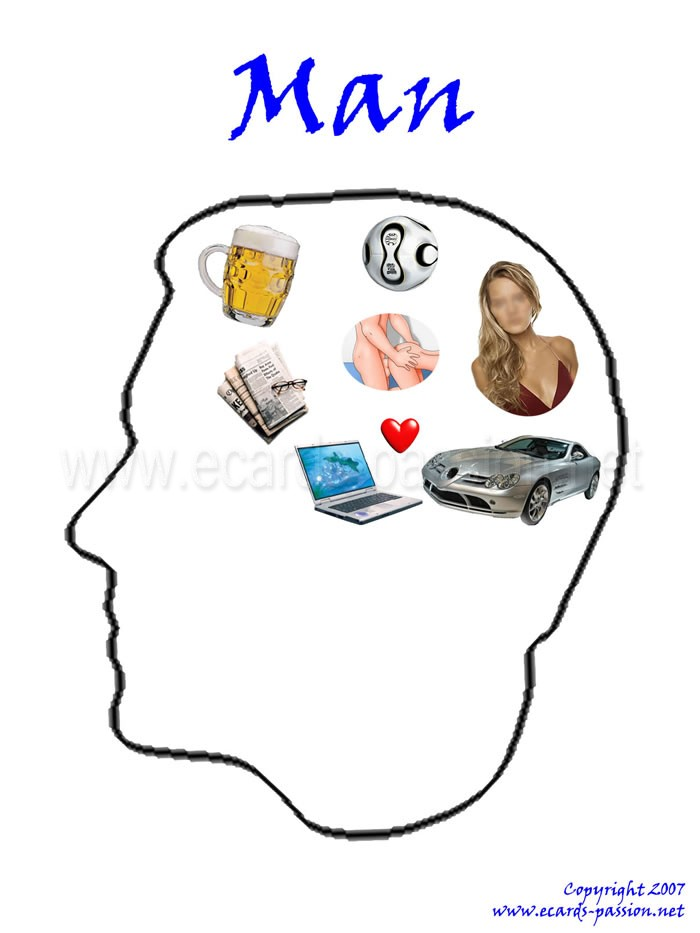 in the head of a man; drink beer; drive cars; play with computers; play football; sleep with girls and women; beating heart; fall in love; read newspapers; notebook; soccer; sports