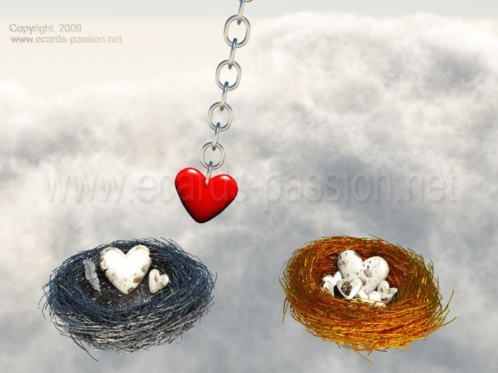 silver and golden nest; hesitation between two loves; swinging heart