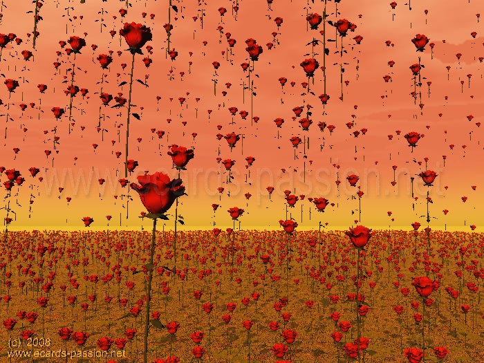 flowers raining on a field; deep love; red roses falling on earth