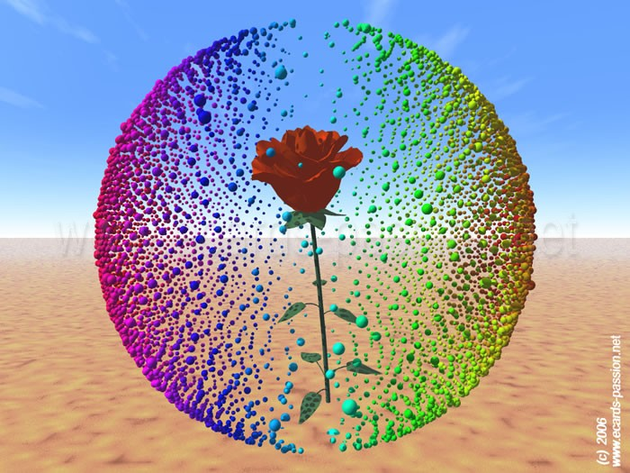 bubbles around red roses; sphere of love