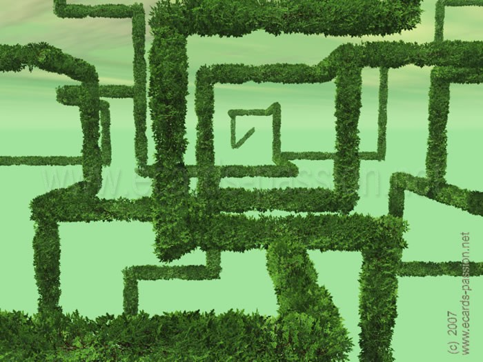 ecologic and green labyrinth; leaves of bushes; nature and ecology; plant growing; squares of vegetation
